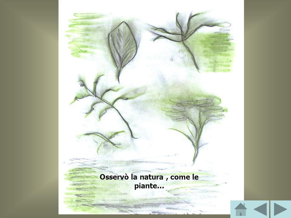 Osservò la natura , come le piante…