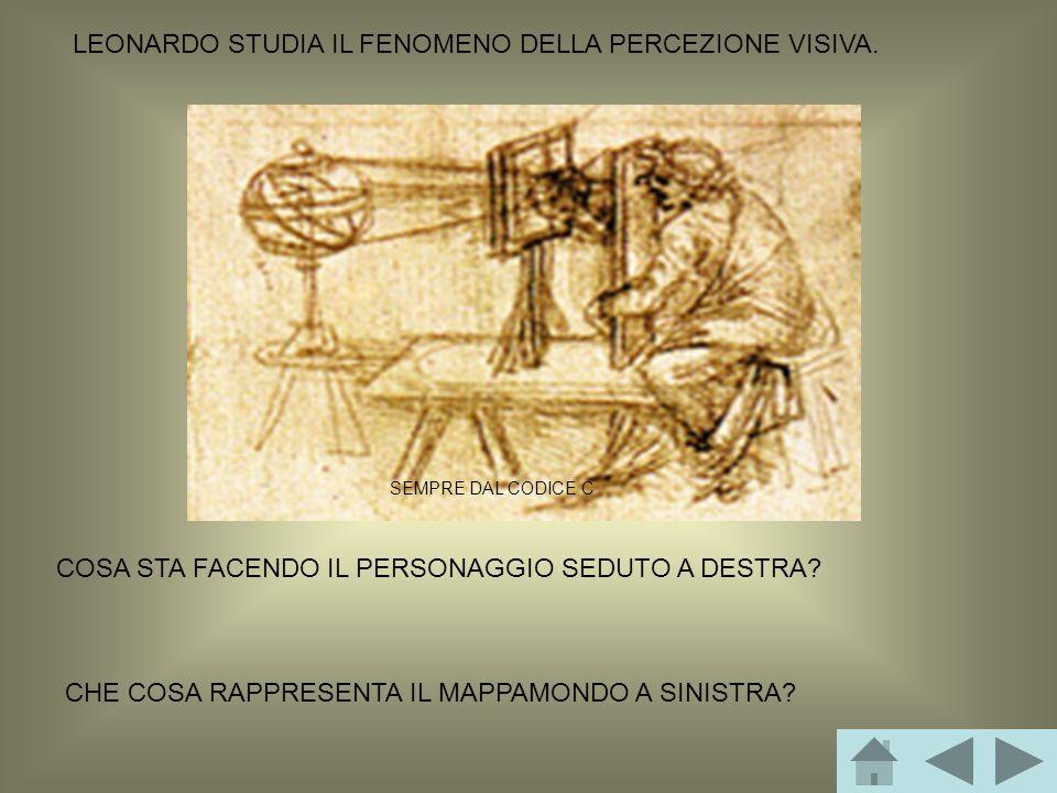 LEONARDO STUDIA IL FENOMENO DELLA PERCEZIONE VISIVA.