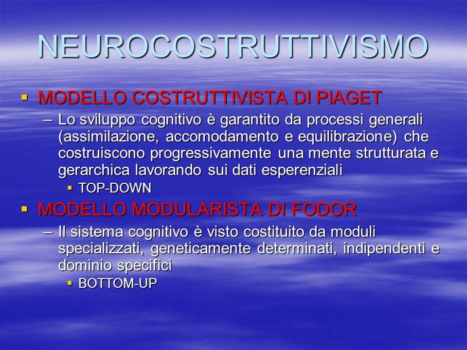 NEUROCOSTRUTTIVISMO MODELLO COSTRUTTIVISTA DI PIAGET