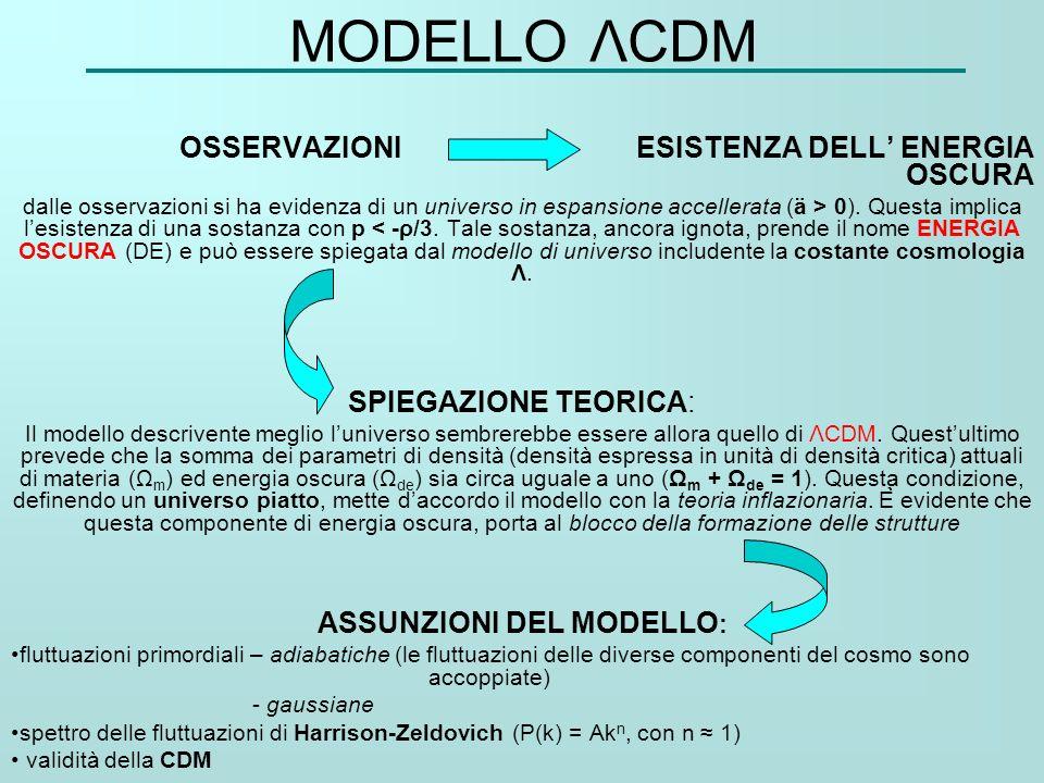 ASSUNZIONI DEL MODELLO: