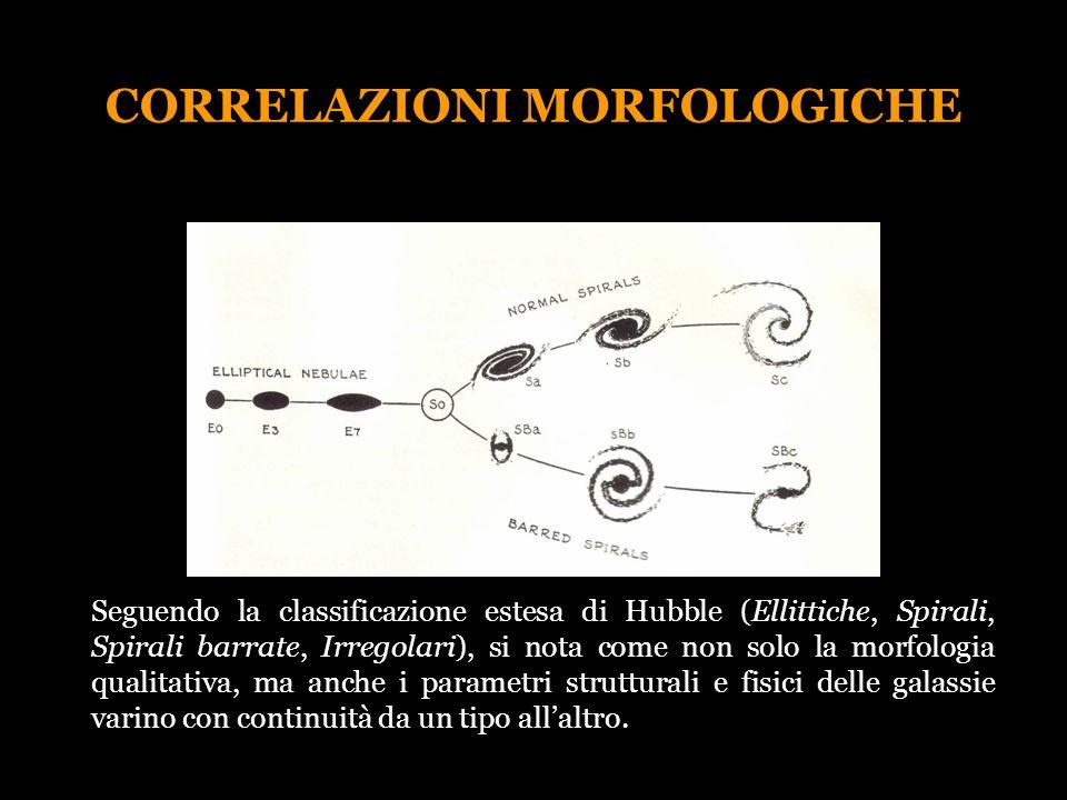 CORRELAZIONI MORFOLOGICHE