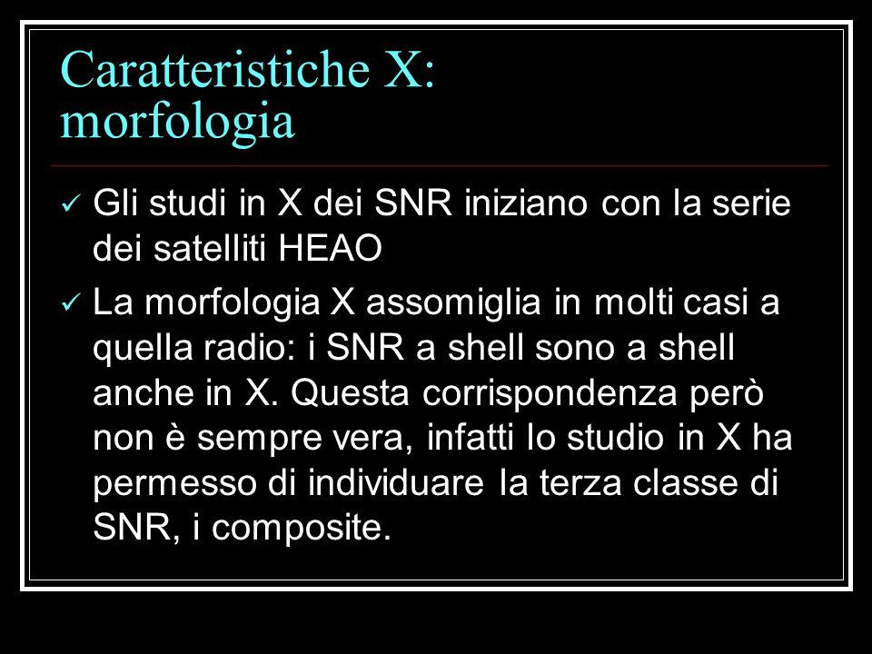 Caratteristiche X: morfologia