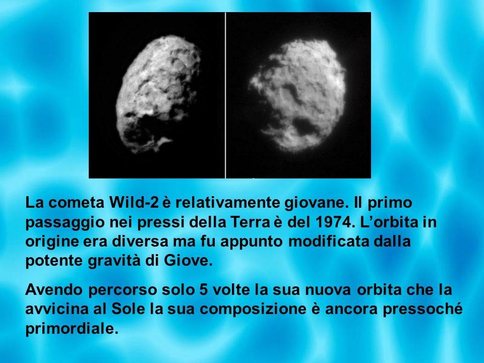 La cometa Wild-2 è relativamente giovane