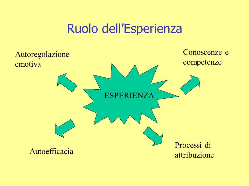 Ruolo dell'Esperienza