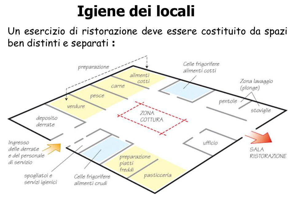 Igiene dei locali Un esercizio di ristorazione deve essere costituito da spazi ben distinti e separati :