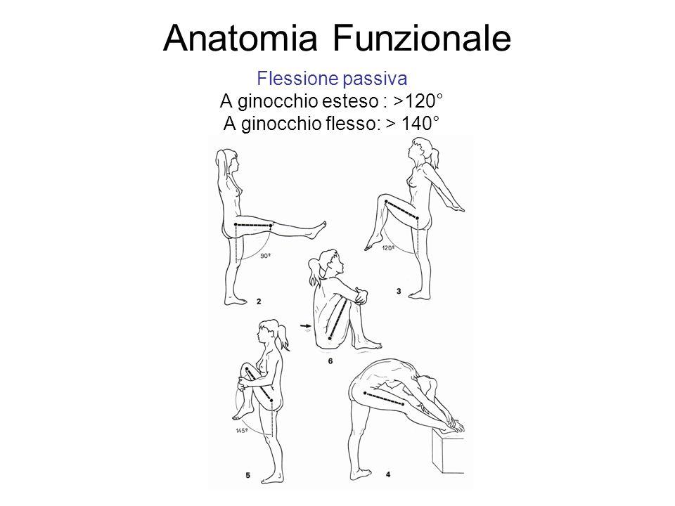 Anatomia Funzionale Flessione passiva A ginocchio esteso : >120°