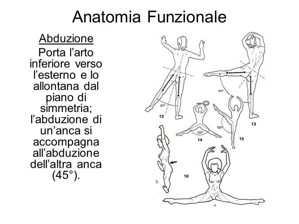 Anatomia Funzionale Abduzione