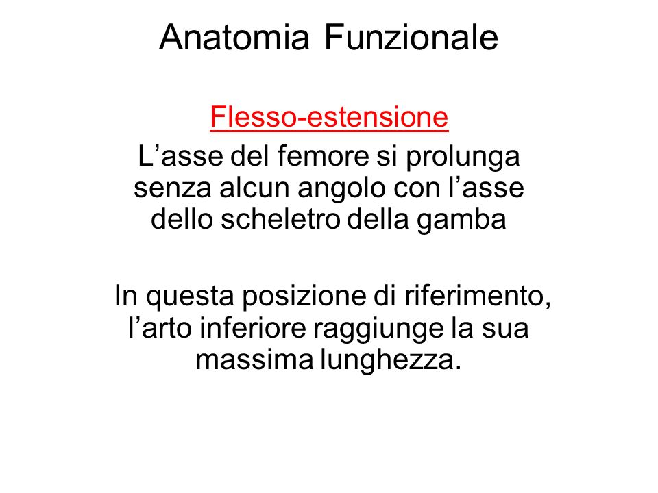 Anatomia Funzionale Flesso-estensione