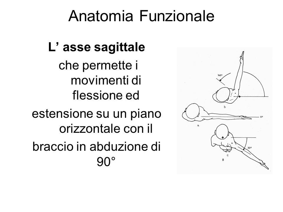 Anatomia Funzionale L' asse sagittale