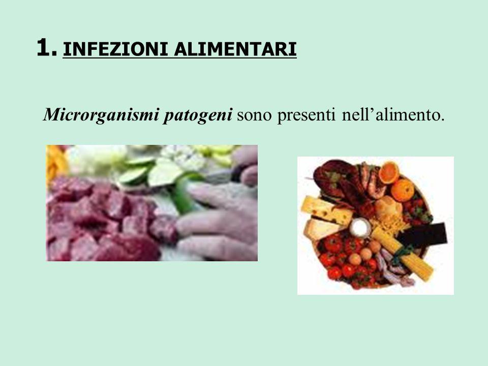 INFEZIONI ALIMENTARI Microrganismi patogeni sono presenti nell'alimento.