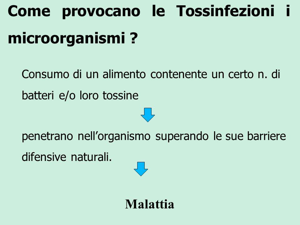 Come provocano le Tossinfezioni i microorganismi