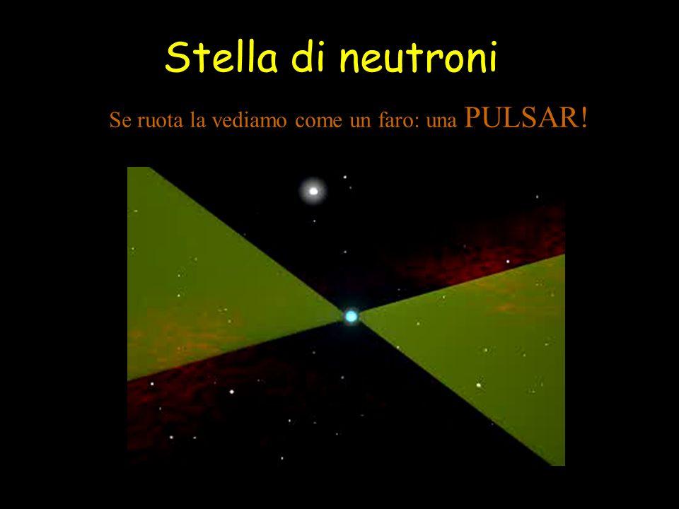 Stella di neutroni Se ruota la vediamo come un faro: una PULSAR!