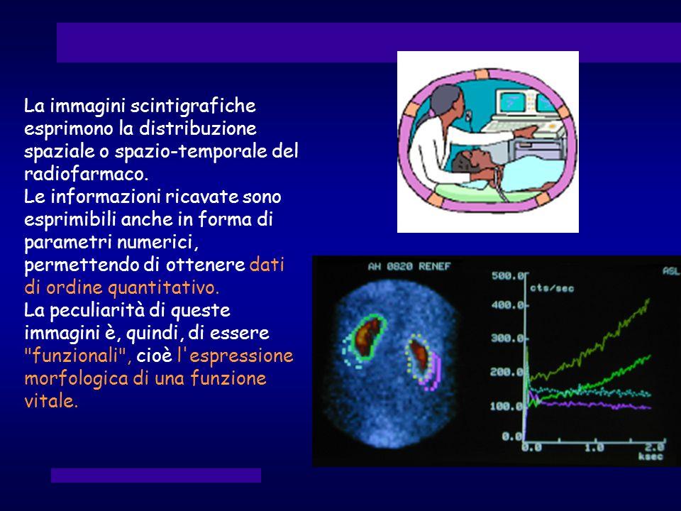 La immagini scintigrafiche esprimono la distribuzione spaziale o spazio-temporale del radiofarmaco.