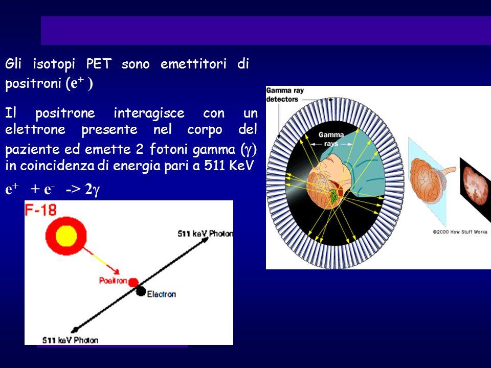 e+ + e- -> 2g Gli isotopi PET sono emettitori di positroni (e+ )