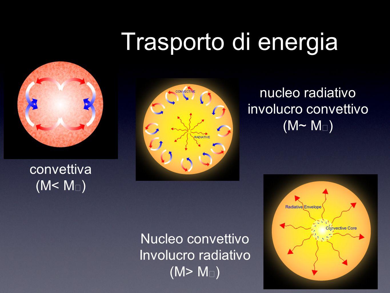 Trasporto di energia nucleo radiativo involucro convettivo (M~ M☉)