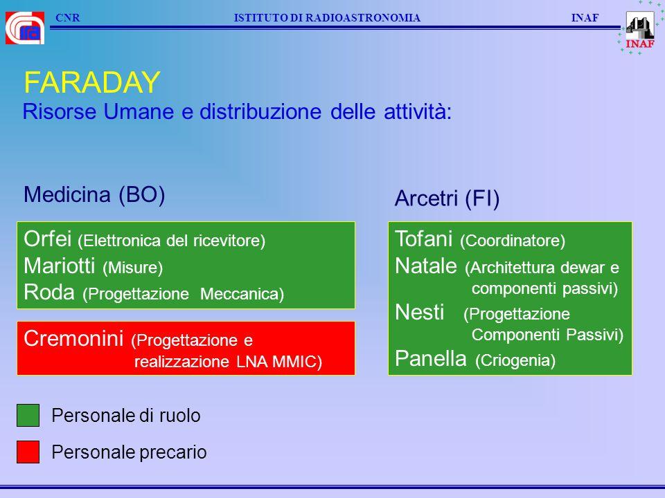 FARADAY Risorse Umane e distribuzione delle attività: Medicina (BO)