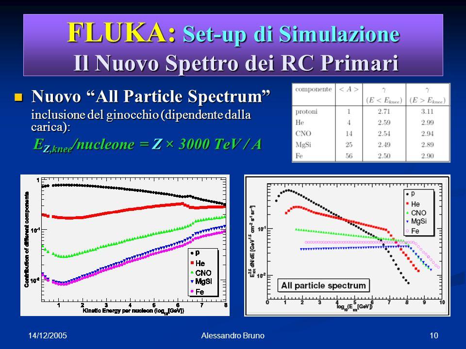 FLUKA: Set-up di Simulazione Il Nuovo Spettro dei RC Primari