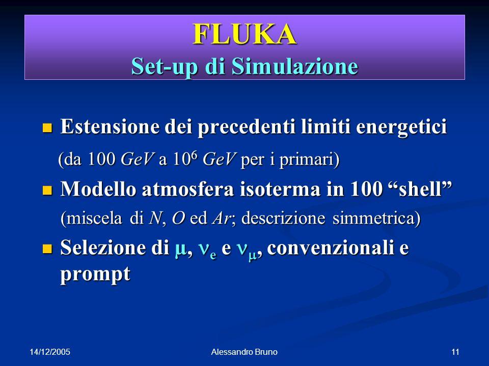 FLUKA Set-up di Simulazione
