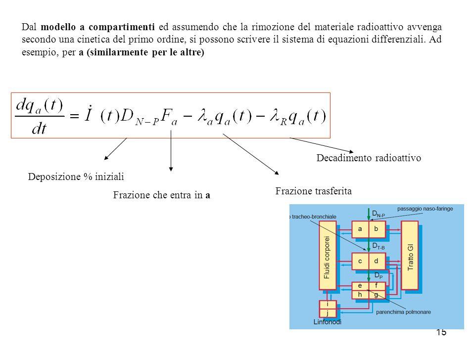 Dal modello a compartimenti ed assumendo che la rimozione del materiale radioattivo avvenga secondo una cinetica del primo ordine, si possono scrivere il sistema di equazioni differenziali. Ad esempio, per a (similarmente per le altre)