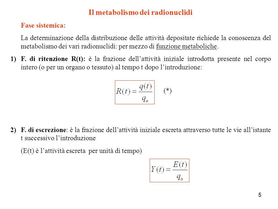 Il metabolismo dei radionuclidi