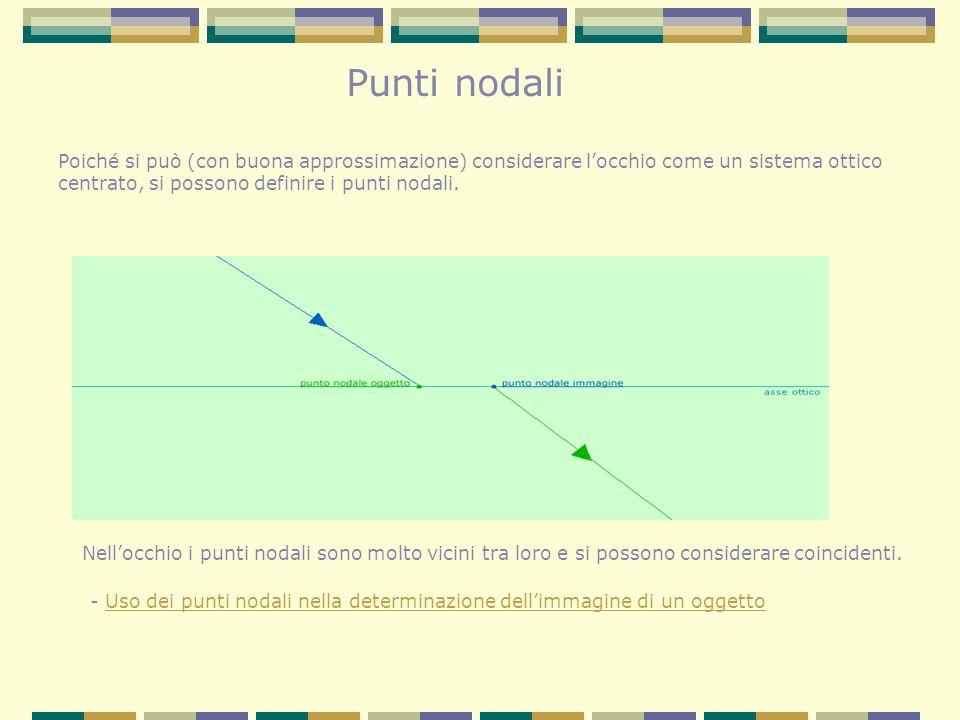 Punti nodali Poiché si può (con buona approssimazione) considerare l'occhio come un sistema ottico.
