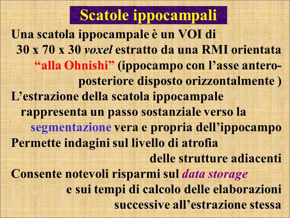 Scatole ippocampali Una scatola ippocampale è un VOI di