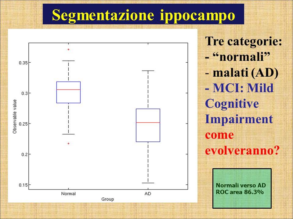 Segmentazione ippocampo