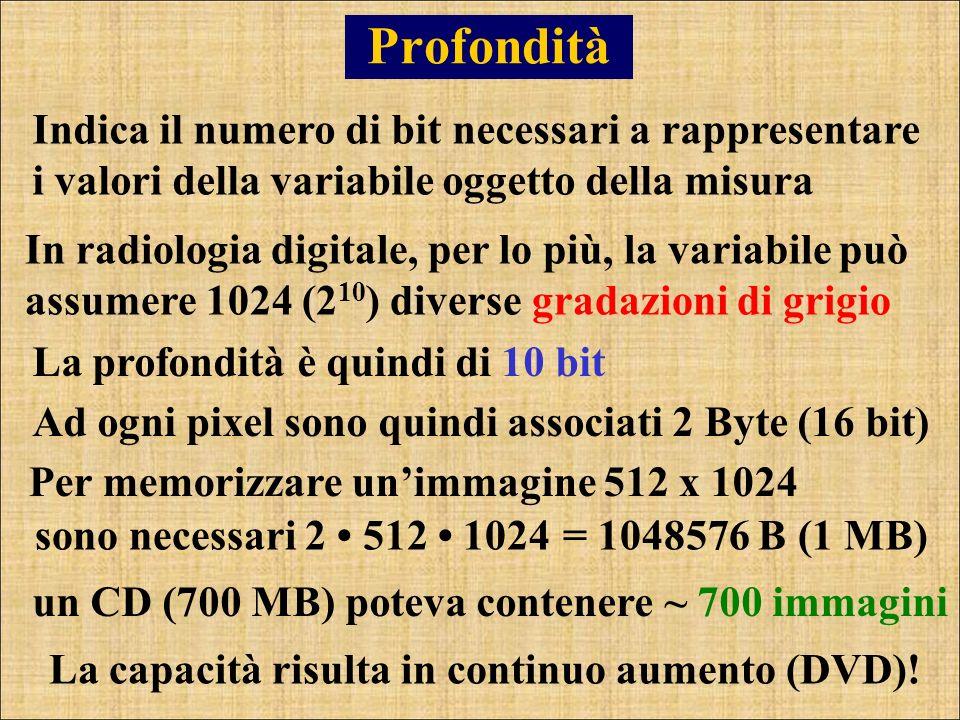 Profondità Indica il numero di bit necessari a rappresentare i valori della variabile oggetto della misura.
