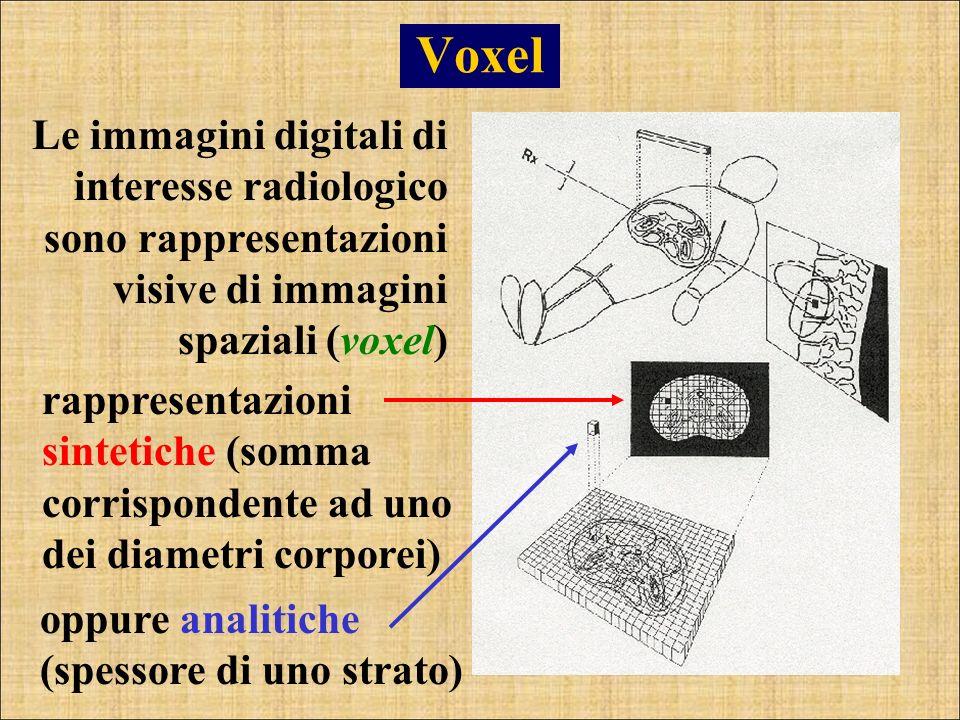 Voxel Le immagini digitali di interesse radiologico sono rappresentazioni visive di immagini spaziali (voxel)
