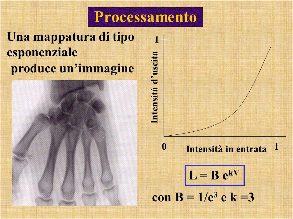 Processamento Una mappatura di tipo esponenziale produce un'immagine
