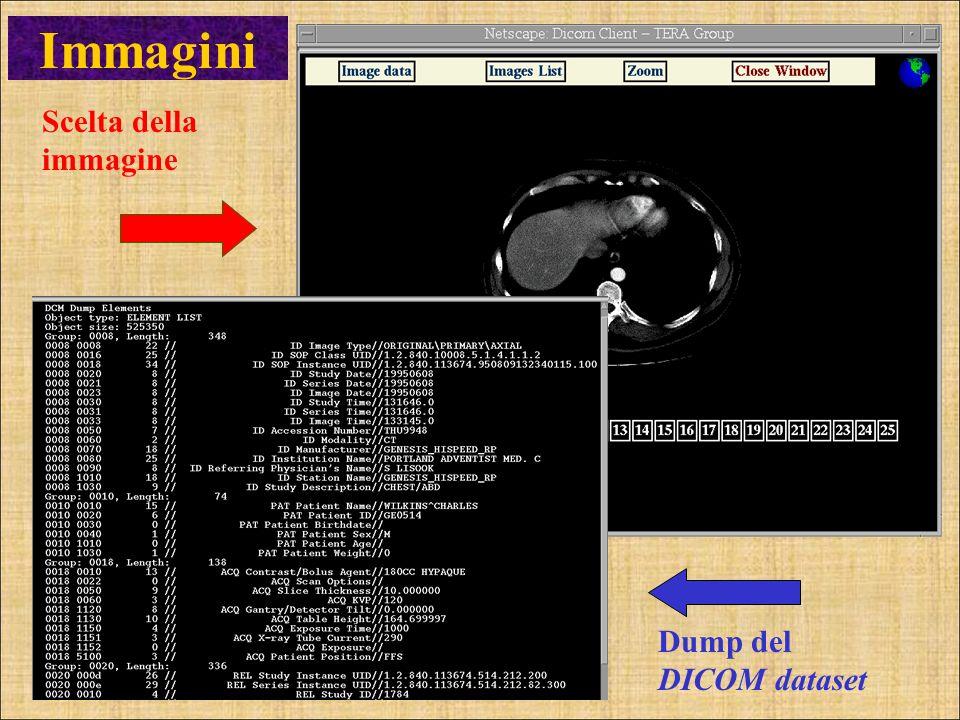 Immagini Scelta della immagine Dump del DICOM dataset