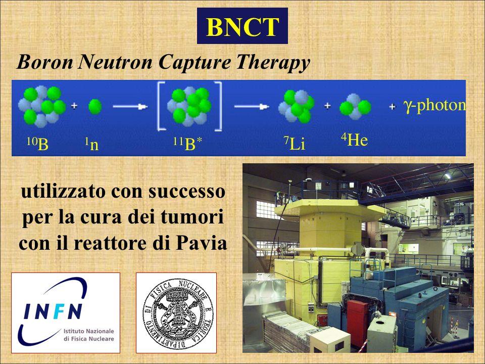 BNCT Boron Neutron Capture Therapy