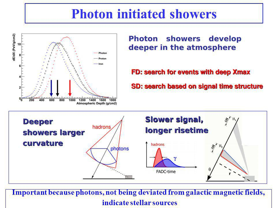 Photon initiated showers
