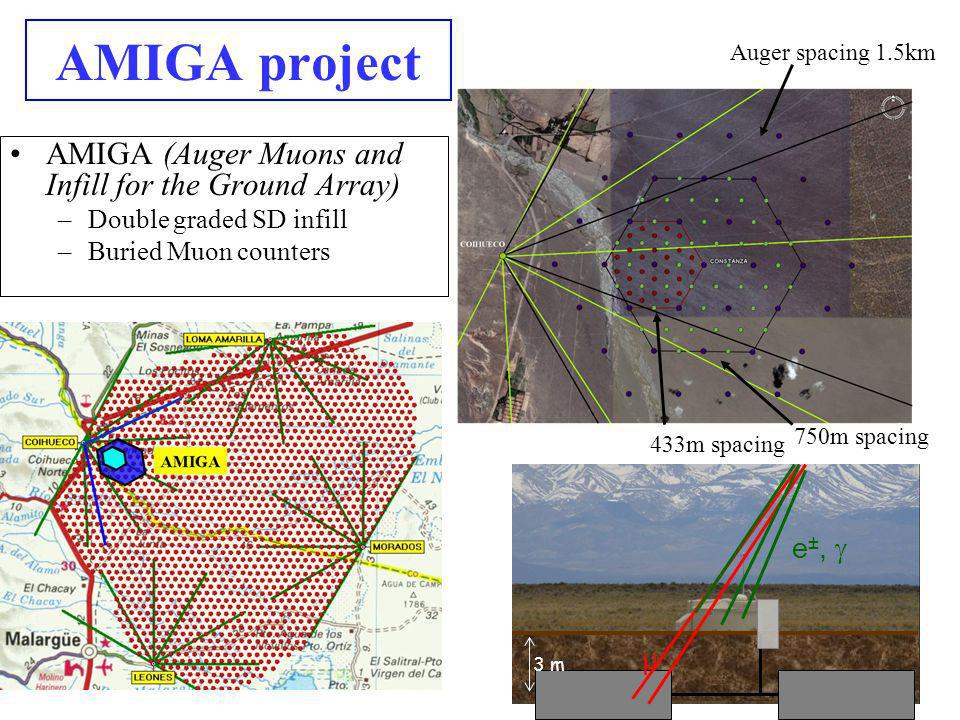 AMIGA project AMIGA (Auger Muons and Infill for the Ground Array)
