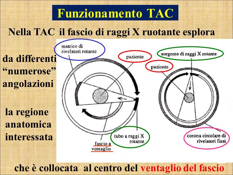 Funzionamento TAC Nella TAC il fascio di raggi X ruotante esplora
