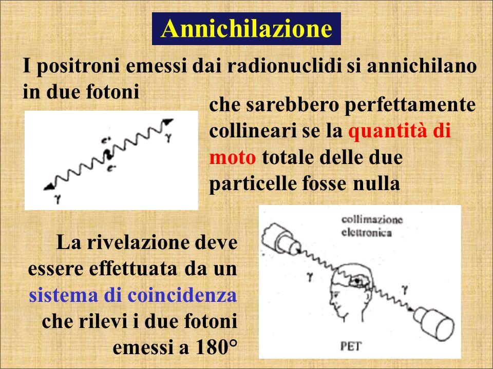 Annichilazione I positroni emessi dai radionuclidi si annichilano in due fotoni.