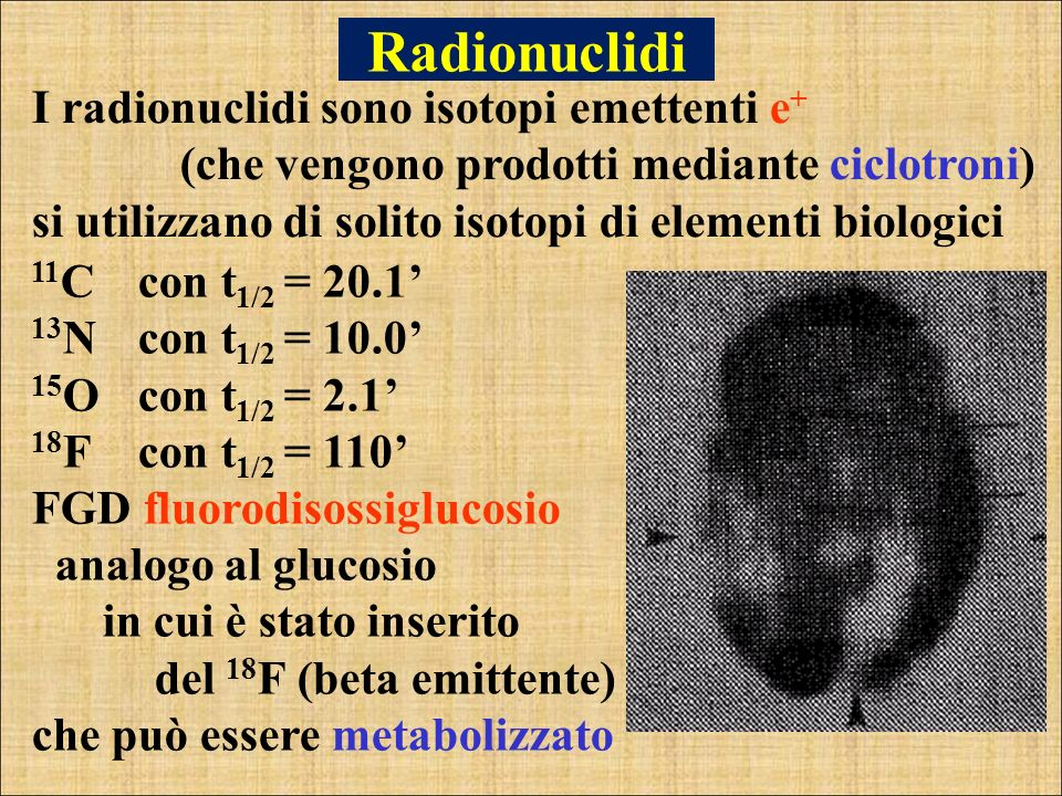 Radionuclidi I radionuclidi sono isotopi emettenti e+