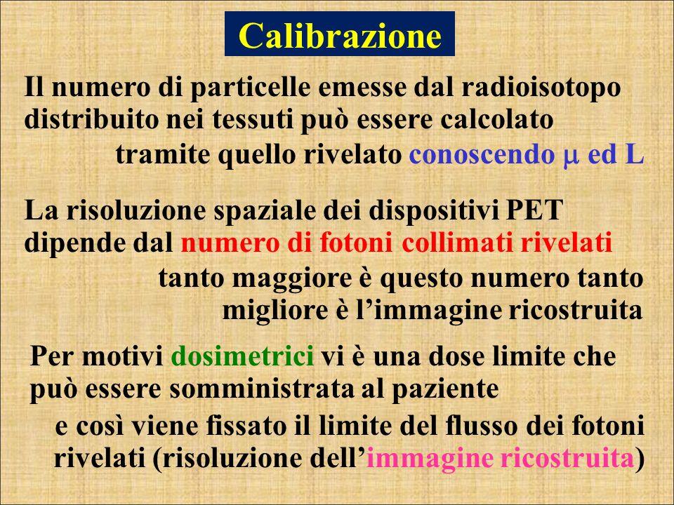 Calibrazione Il numero di particelle emesse dal radioisotopo distribuito nei tessuti può essere calcolato.