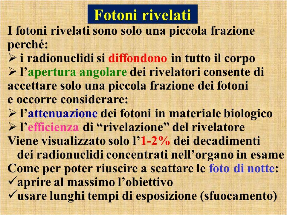 Fotoni rivelati I fotoni rivelati sono solo una piccola frazione perché: i radionuclidi si diffondono in tutto il corpo.
