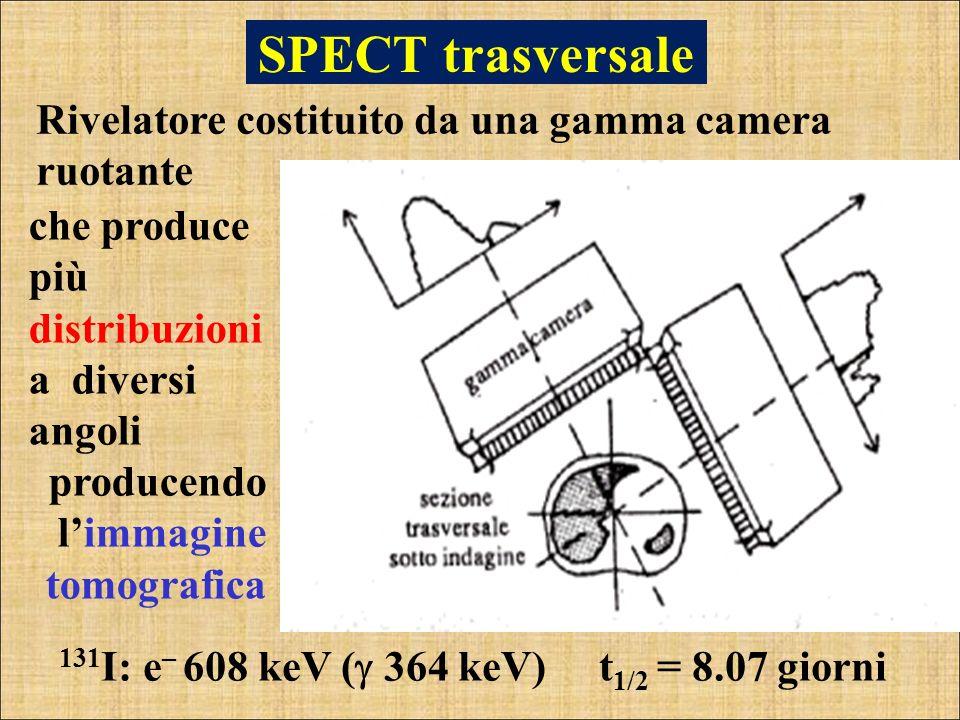 SPECT trasversale Rivelatore costituito da una gamma camera ruotante