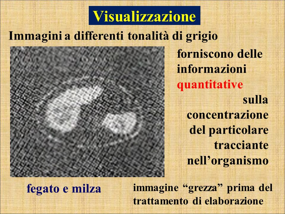 Visualizzazione Immagini a differenti tonalità di grigio