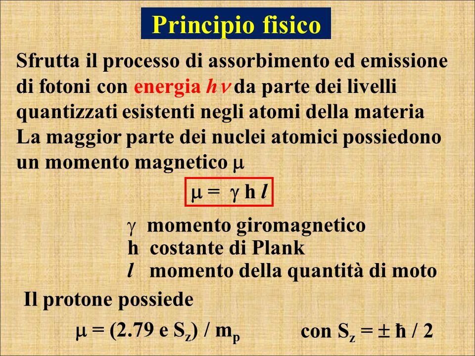 Principio fisico