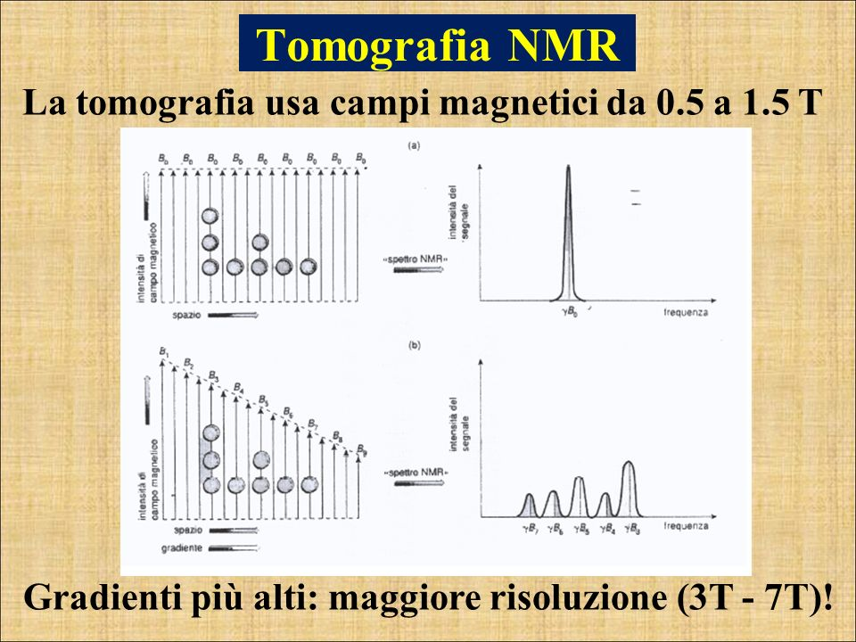 Tomografia NMR La tomografia usa campi magnetici da 0.5 a 1.5 T