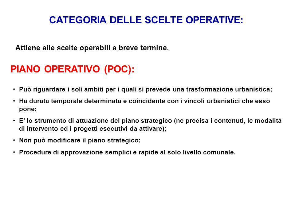 CATEGORIA DELLE SCELTE OPERATIVE: