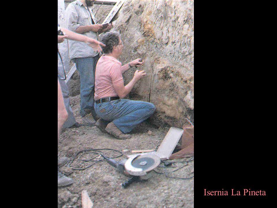 Isernia La Pineta