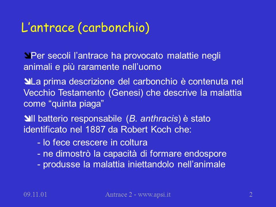 L'antrace (carbonchio)