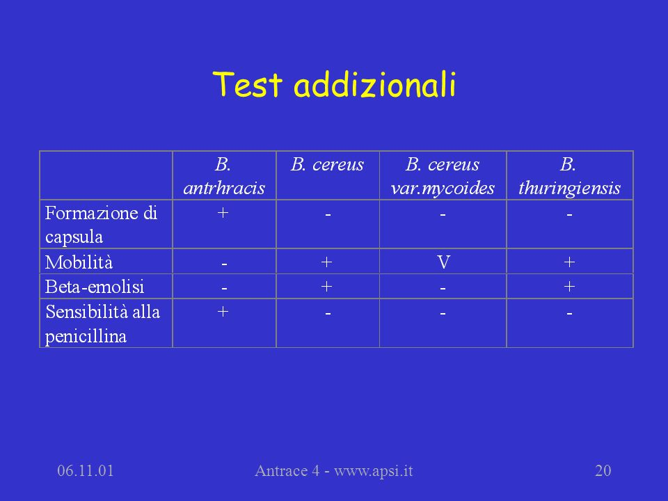 Test addizionali Antrace 4 -