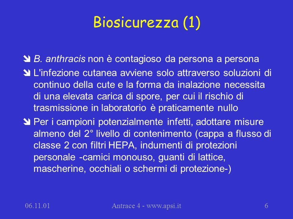 Biosicurezza (1) B. anthracis non è contagioso da persona a persona