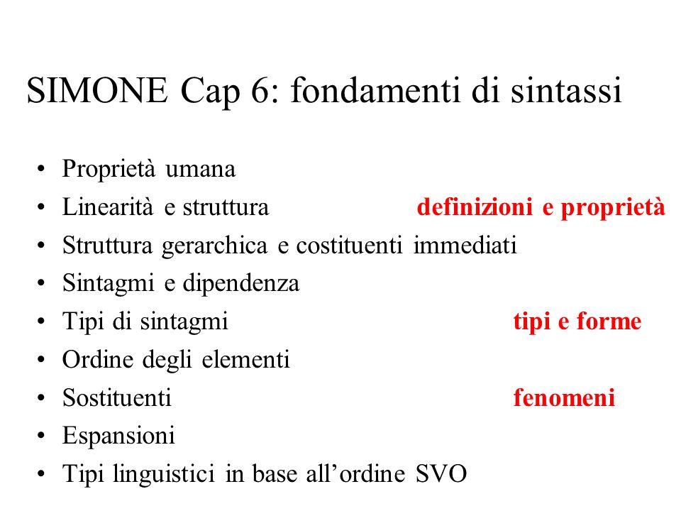 SIMONE Cap 6: fondamenti di sintassi