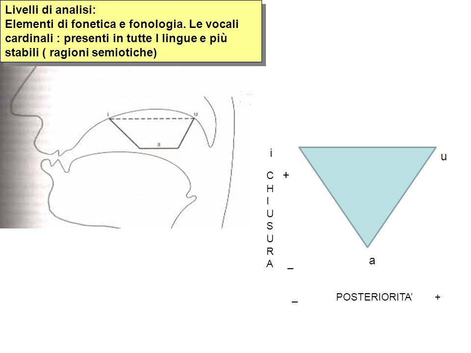 Livelli di analisi: Elementi di fonetica e fonologia